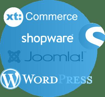 Internetagentur für Shop oder Homepage